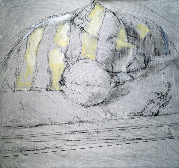 Artwork - Lemon And Chilli Graphite and Oil on panel Drawing | Stephen Robson - Graphite and Oil on panel