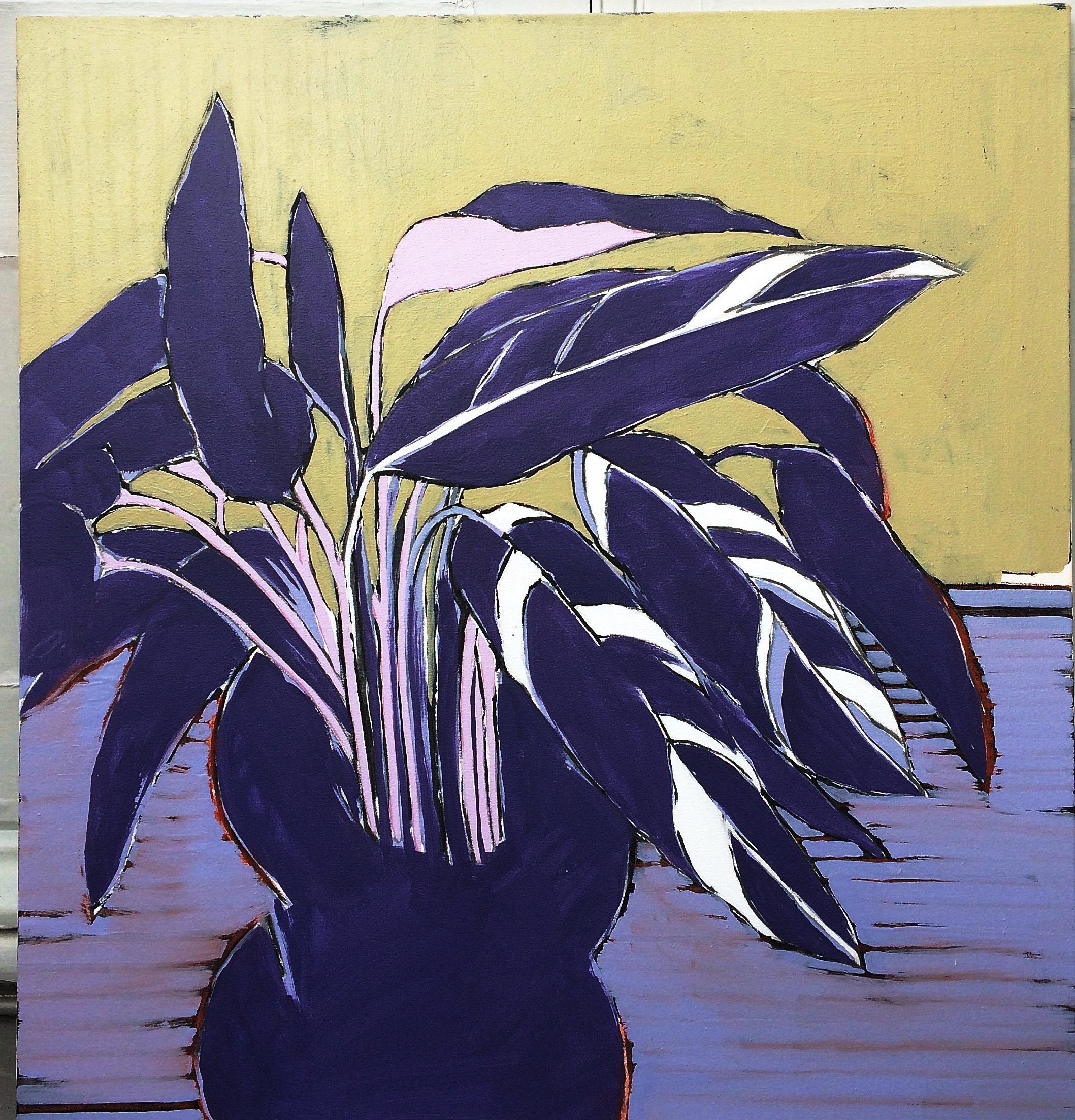 Artwork - Calathea acrylic on canvas Painting | Stephen Robson | Buy Today! - acrylic on canvas