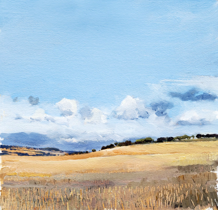Artwork - July Fields Oil on Board Painting | Stephen Robson - Oil on Board