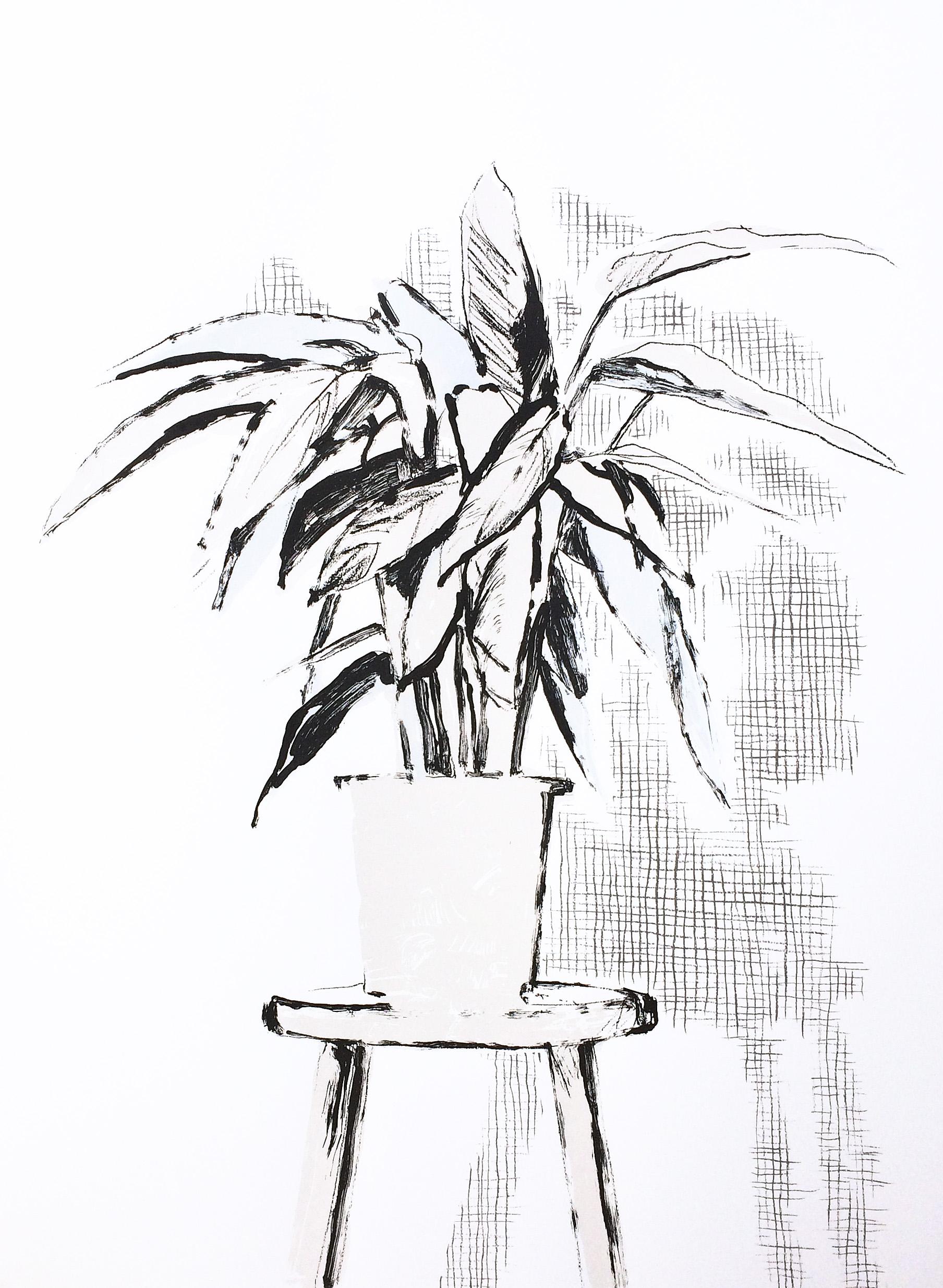 Artwork - Calathea (monochrome) Screenprint Print | Stephen Robson | Buy Today! - Screenprint