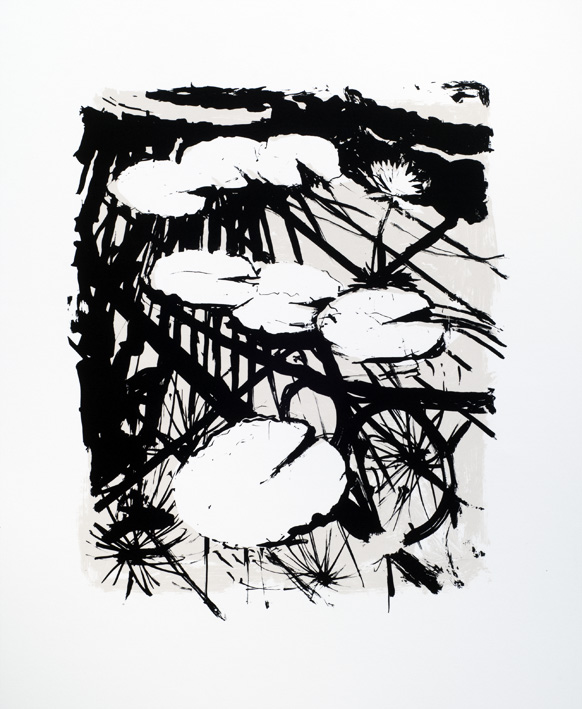 Artwork - Kew Waterlilies screenprint Print | Stephen Robson - screenprint