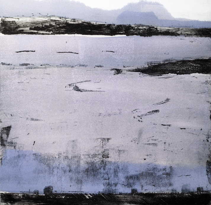 Artwork - Oystercatcher Etching and monoprint Print   Stephen Robson - Etching and monoprint